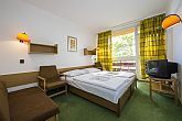 Double room in Hotel Napfeny in Balatonlelle at discount prices