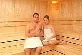 Thermal and wellness hotel in Erd - Finnish sauna in Thermal Hotel Liget